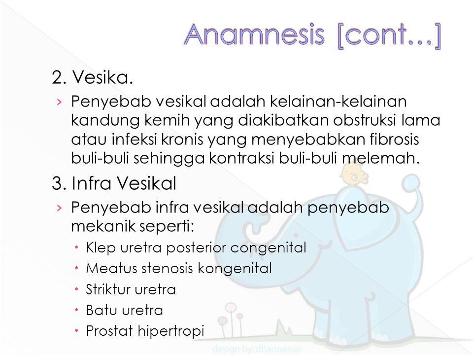Anamnesis [cont…] 2. Vesika. 3. Infra Vesikal